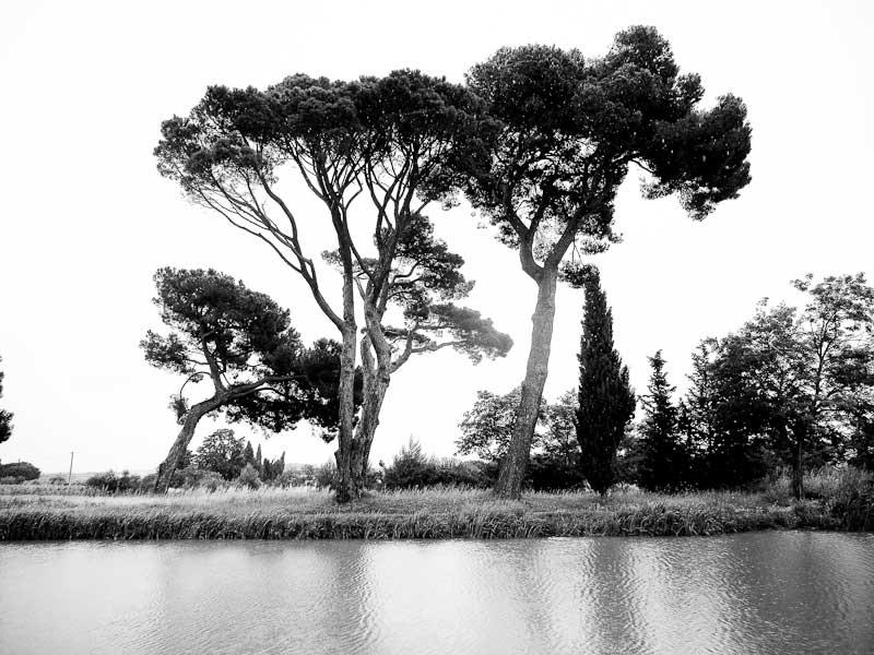 canal-du-midi-les-pins