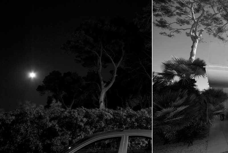 night-and-day